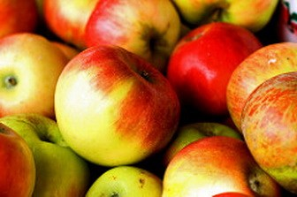 Apples sugar alcohol