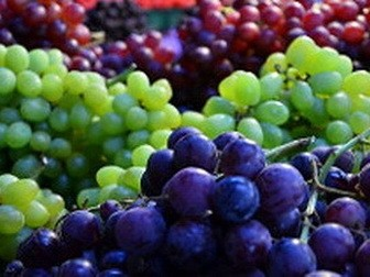 Grapes hard on digestion