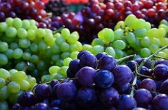 Grapes digestion