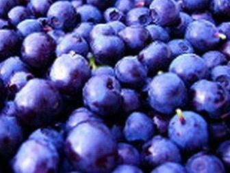Non Gassy Fruits