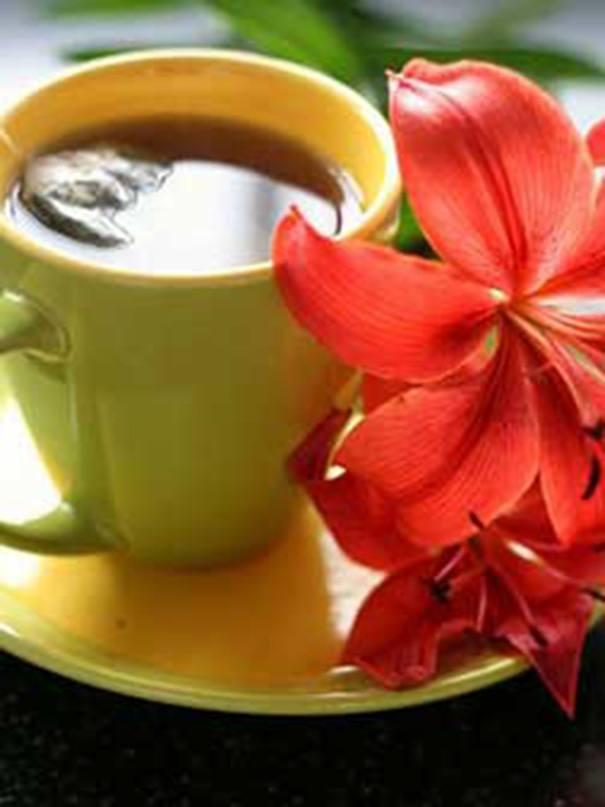 Peppermint tea for better digestion