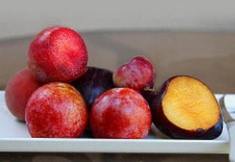 Stone fruit sorbitol